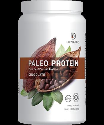Paleo Protein - Chocolate